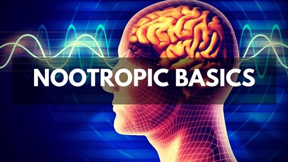 Nootropics – Engineer, Programmer, Innovator